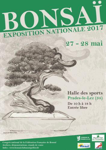 affiche congrès ffb 2017