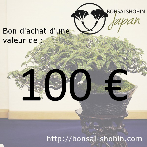 bon d 39 achat de 100 valoir sur le site bonsai shohin. Black Bedroom Furniture Sets. Home Design Ideas