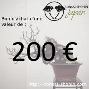 bon achat 200 euros