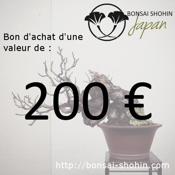 bon d 39 achat de 200 valoir sur le site bonsai shohin. Black Bedroom Furniture Sets. Home Design Ideas