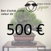 bon achat 500 euros