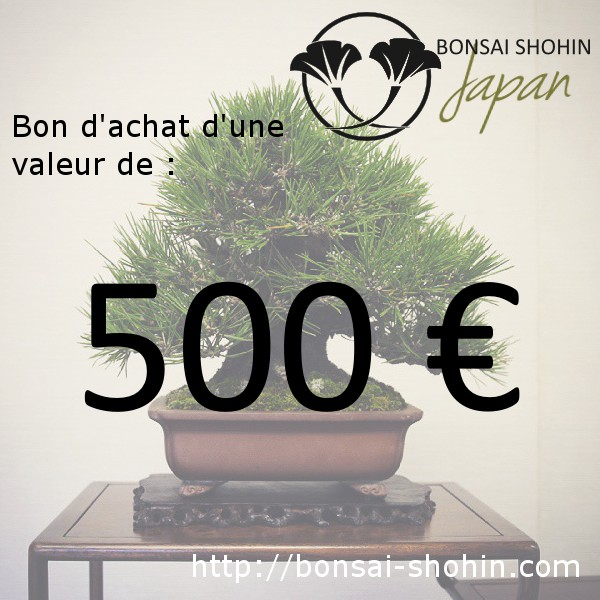 bon d 39 achat de 500 valoir sur le site bonsai shohin. Black Bedroom Furniture Sets. Home Design Ideas