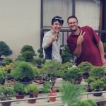 Koji Hiramatsu shohin bonsai