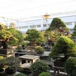 jardin koukaen
