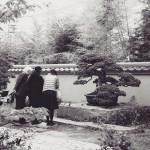 omiya bonsai museum 20