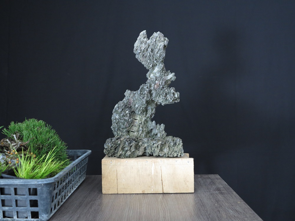 pierre pour ishizuki