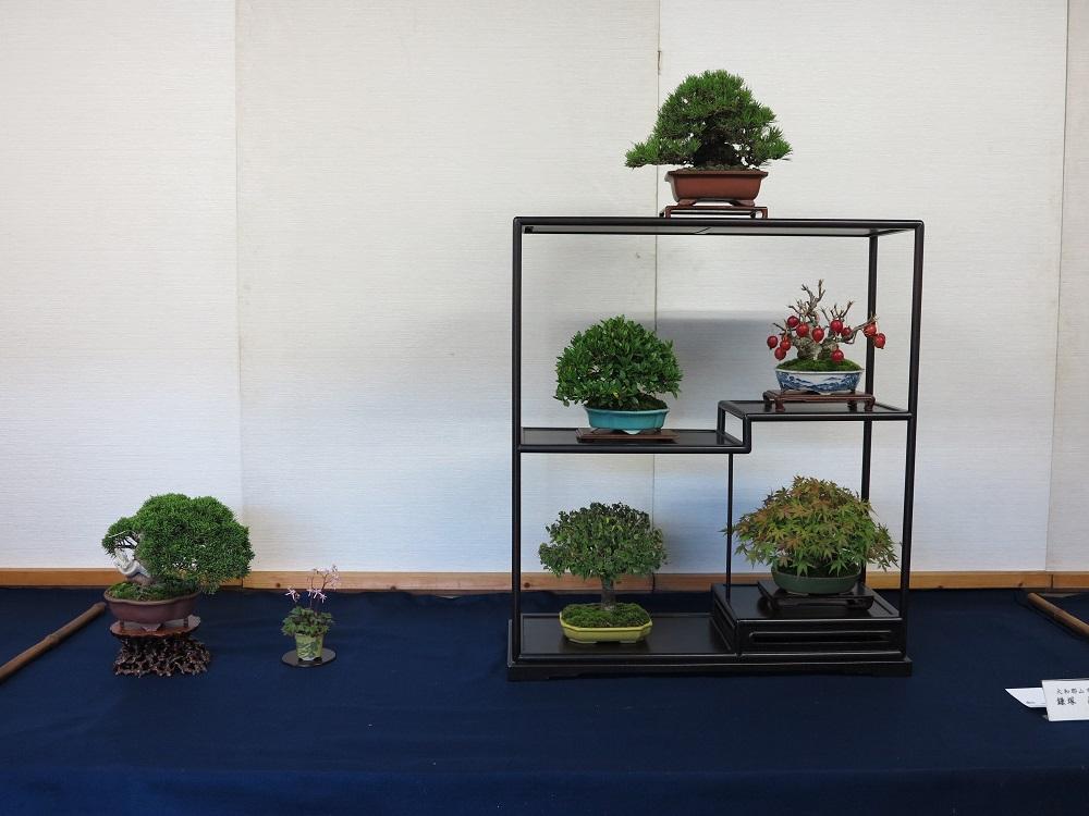 Composition de shohin en armoire Fuji