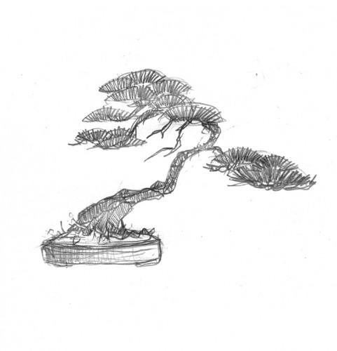 NOREGO dessin pin 1