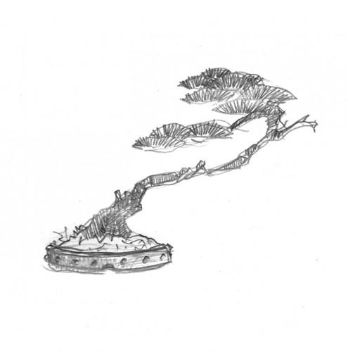 NOREGO dessin pin 2