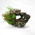 pierre ishizuki 00002 -02