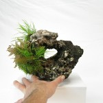 pierre ishizuki 00002 -03