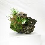 pierre ishizuki 00002 -04