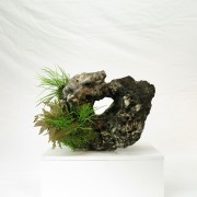 pierre ishizuki 00002 -07