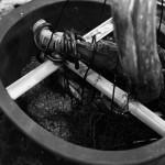 rempotage sabina fixation dans le pot