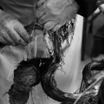 rempotage sabina rafiat des racines