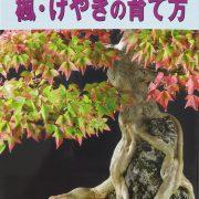 livre kinbon buerger