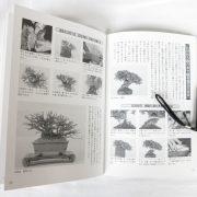 livre kinbon buerger 2