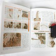 livre kinbon buerger 3