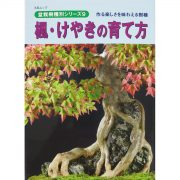 livre kinbon buerger - cover