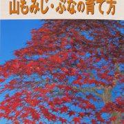 livre kinbon palmatum