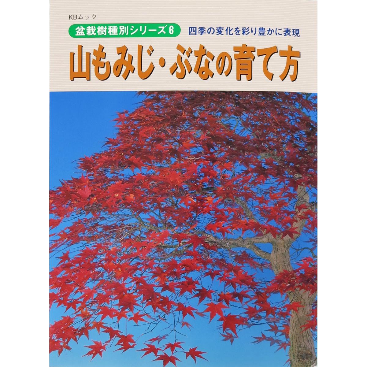 livre kinbon palmatum - cover