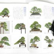 livre kinbon pin blanc 1