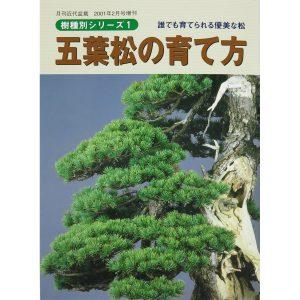 livre kinbon pin blanc - cover