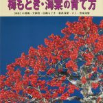 livre kinbon pin ilex