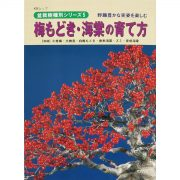 livre kinbon pin ilex - cover