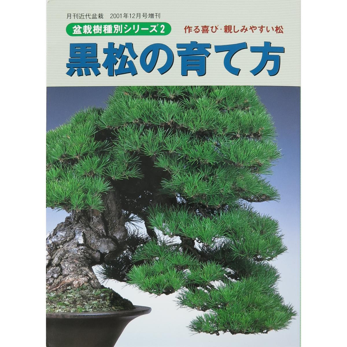livre kinbon pin noir - cover