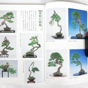livre kinbon pin rouge 1
