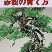 livre kinbon pin rouge
