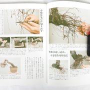 livre kinbon pin rouge 2