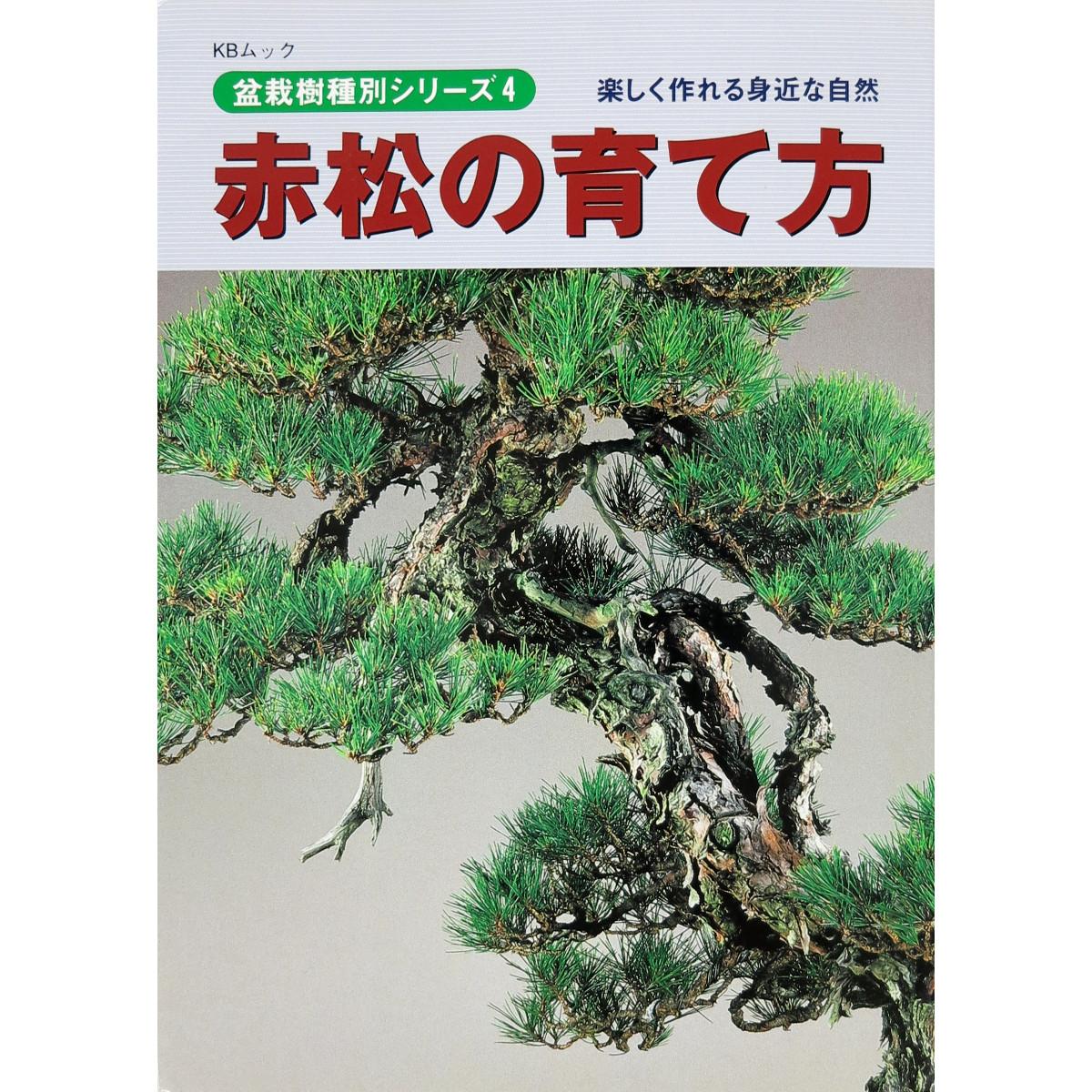 livre kinbon pin rouge - cover