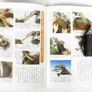 livre kinbon shimpaku 3