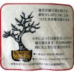 akadama moyen détail du paquet