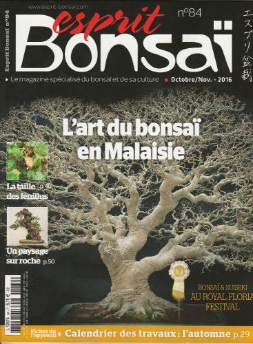 couverture esprit bonsai 84