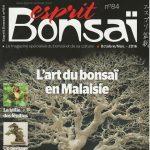 Présentation Esprit Bonsaï 84