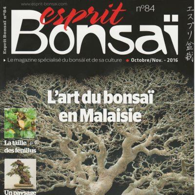 esprit bonsai 84