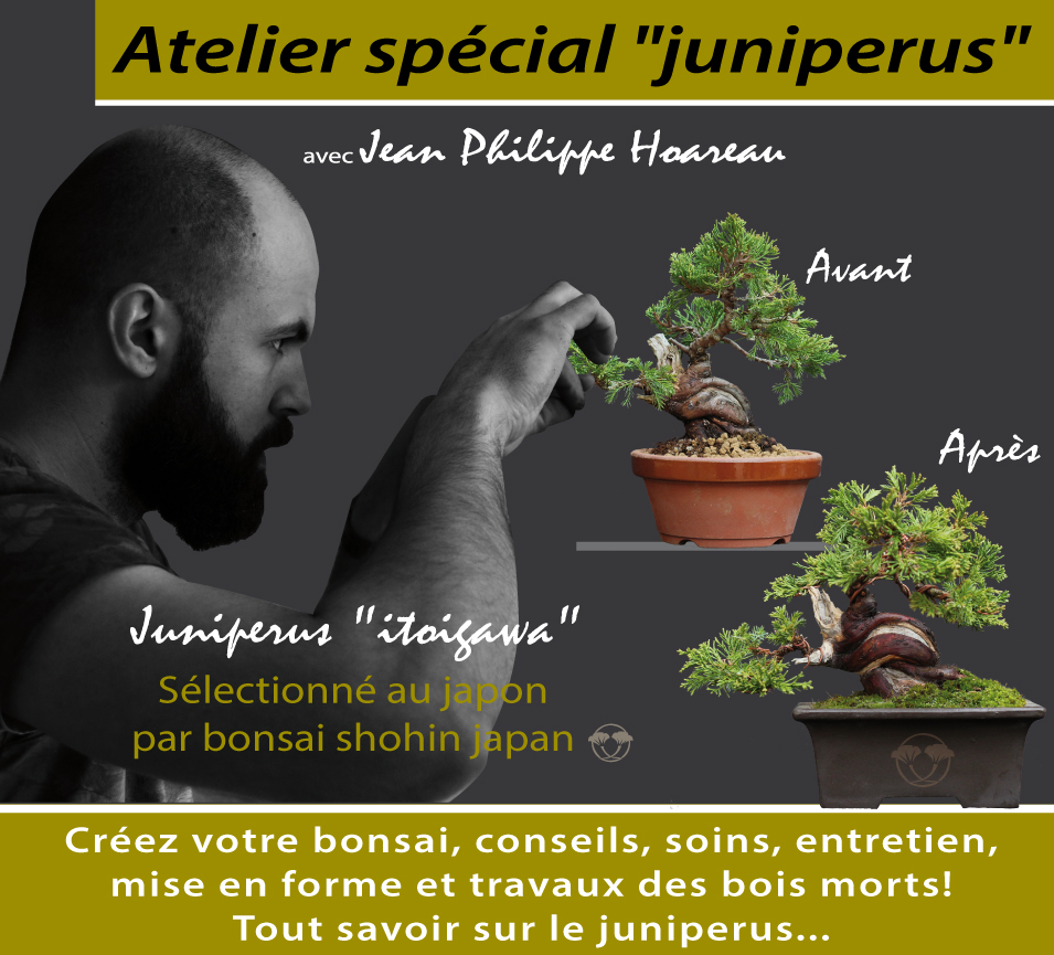 http://bonsai-shohin.com/wp-content/uploads/2017/01/affiche-atelier.jpg