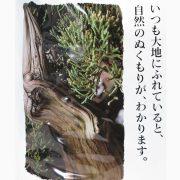 engrais japonais