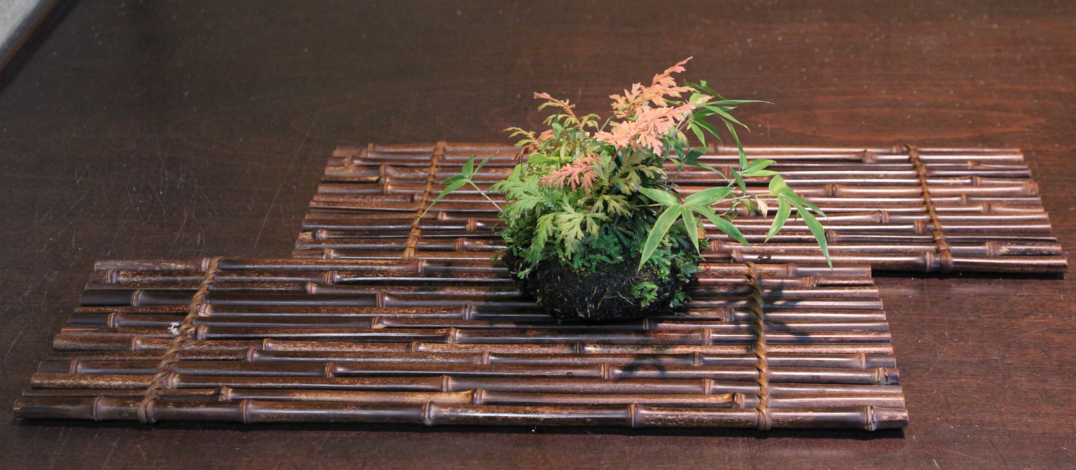 http://bonsai-shohin.com/wp-content/uploads/2017/09/kusamono-en-exposition.jpg