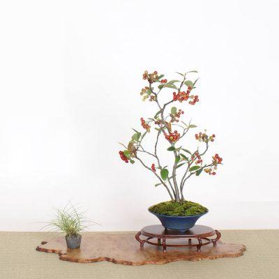 exposition kanagawa rengo-ten